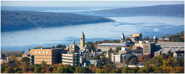 Cornell Program for International Undergraduates